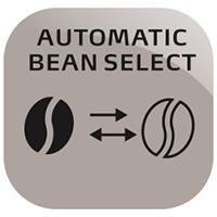 AAAI36_Auto Bean Sel