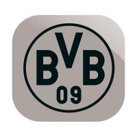 AAAI42_BVB_Fanartikel