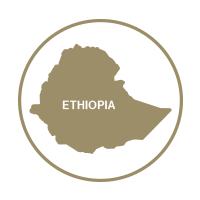 PAAF1121_Ethiopia